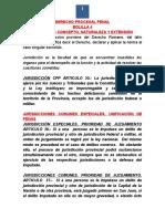 Derecho Procesal Penal Bolilla 4