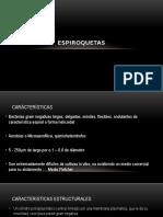 ESPIROQUETAS.pptx