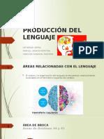 PRODUCCIÓN DEL LENGUAJE (1).pptx