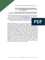 LEVANTAMENTO PRELIMINAR DE PINGUINS DE MAGALHÃES (SPHENISCUS MAGELLANICUS) (SPHENISCIFORMES) REABILITADOS NA COSTA CAPIXABA