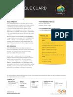AMC TORQUE GUARD.pdf