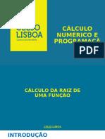 Métodos numéricos e Computação - Raízes - MPF 2016.2.pptx