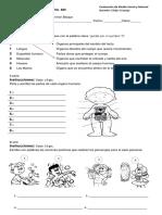 Examenes de Primaria (2).pdf