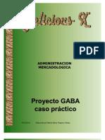 Administracion Mercadologica. Plan Estrategico.- Proyecto GABA