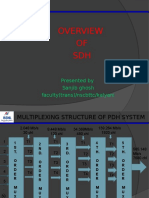 overview of sdh