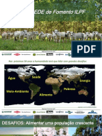 Integração Lavoura Pecuaria Floresta