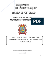 ANALISIS AMBIENTAL 1raParte