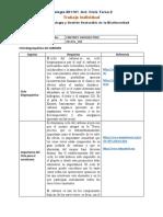 Formato individual ciclo  de tarea 2 - Entrega