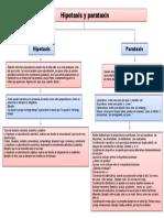 hipotaxis y parataxis 1.docx