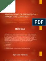 APH-BRIGADAS DE EMERGENCIA