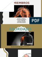 ABORDAJES MIEMBRO SUPERIOR.pptx