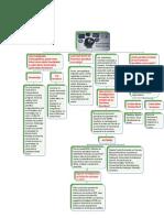 MAPA CONCEPTUAL COMPLEMENTARTIO DE LAS FUNCIONES EJECUTIVAS