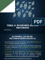 Economía de Los Recursos