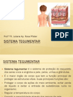 (4) SISTEMA TEGUMENTAR