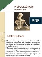 (6) SISTEMA ESQUELÉTICO.pdf