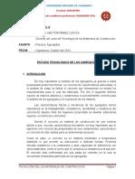 INFORME  DE AGREGADOS