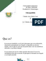 Glucogenolisis Pdf