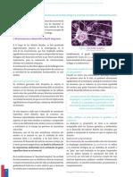 Guia Chile Crece Contigo - Hitos del desarrollo 15 abril