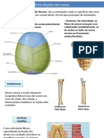 Sistema osseo.pptx