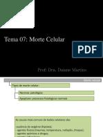 Tema 07 - Morte Celular