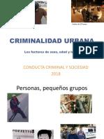 S4-SP-Crim CBU Sesion Delincuencia Urbana 2018