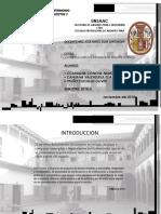 VALORES INTEGRALES DE PATRIMONIO