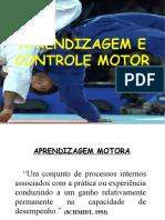 Aprendizagem e Controle Motor