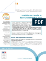 FI00318 PAM F01 Deficience Visuelle