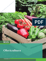 olirecultura