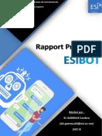 Rapport Système Expert