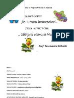 0_2_proiect_de_lectie_dlc.docx