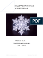 ESSÊNCIAS VIBRACIONAIS  CRISTALINAS-convertido (1).pdf