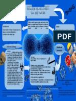 INFOGRAMA-CANCER