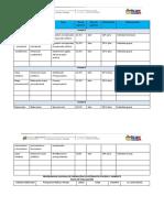 Formato Plan Evaluacion Presupuesto.