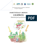 Insecticidas caseros