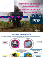 IMPULSO A LA PRODUCTIVIDAD AGRÍCOLA 2020_Granos__organizaciones.pdf