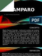 05 EL AMPARO  2020.pptx