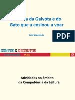 7PP gaivota e gato_Contos e Recontos _ASA