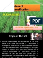 The System of Rice Intensification- for food security- Dr.P.K.Jana