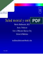 Maldonado. Salud mental y embarazo.pdf