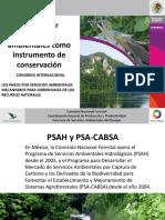 pagosPSA.pdf