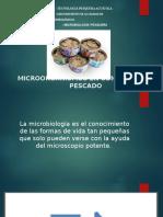 MICROORGANISMOS EN CONSERVAS DE PESCADO