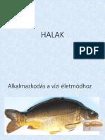 HALAK.pdf