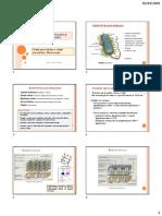 TA 918_ aula 2 2020.pdf