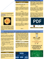 TRIPTICO IMPORTANCIA DE LOS ELEMENTOS EN LOS SERES VIVOS.docx