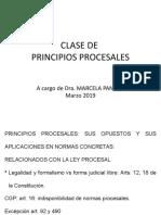 Principio procesales.pptx