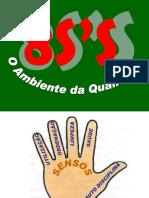 LIMPEZA 5S A BASE DA QUALIDADE ESTÁ EM SUA MÃO.pdf