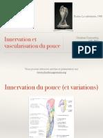 Innervation Et Vascularisation Du Pouce