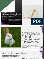 Estados Microbiológicos