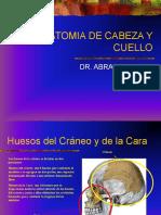 CRANEO Y CARA
